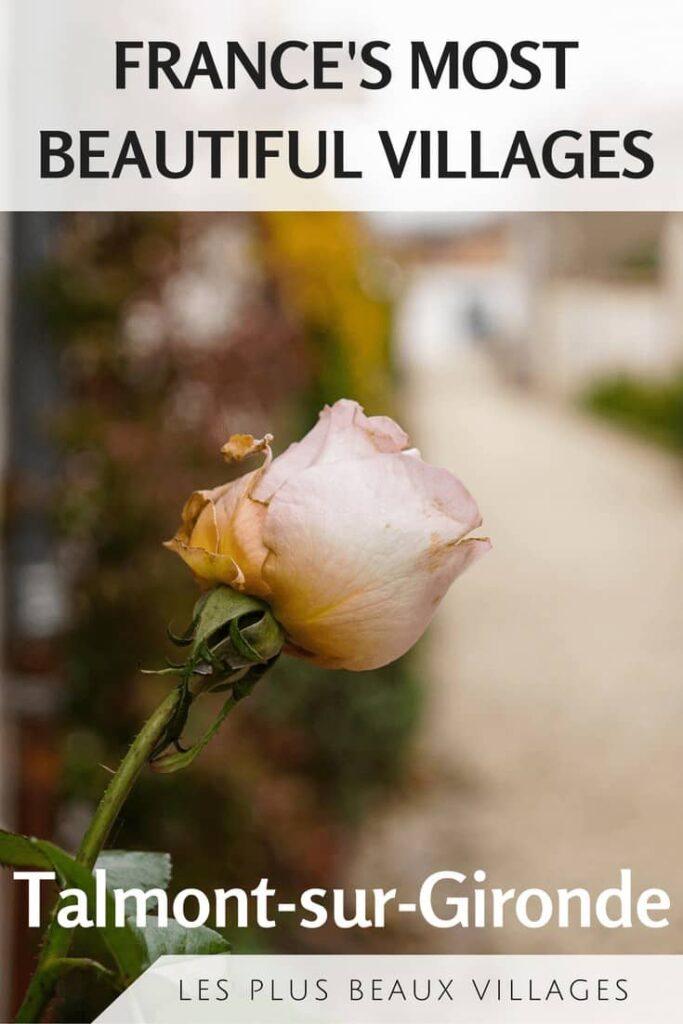 Talmont-sur-Gironde, Les plus beaux villages de france