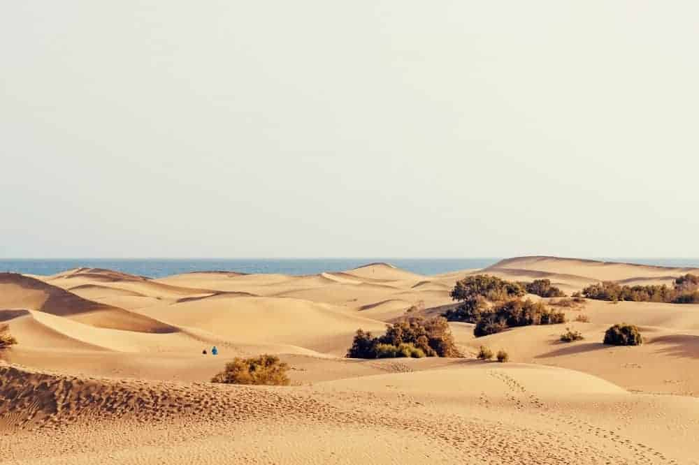 Reasons to visit Gran Canaria in winter. Dunes at Maspalomas, Gran Canaria.