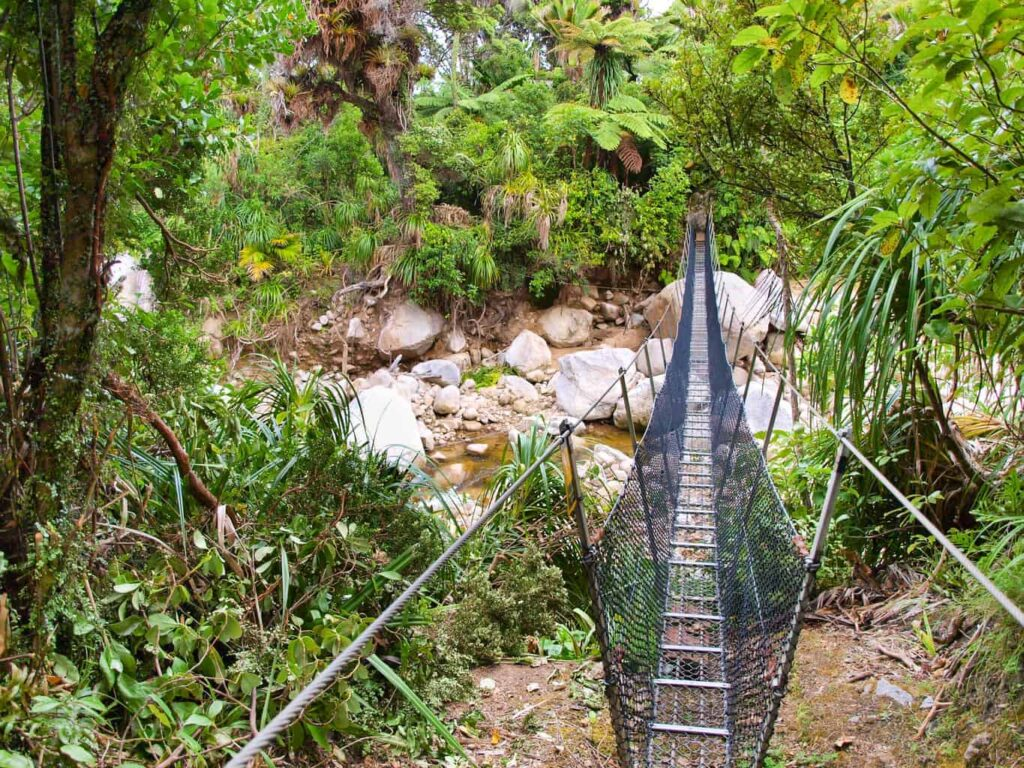 Swingbridge on the Heaphy Track. The Heaphy Track is one of New Zealand's Great Walks.