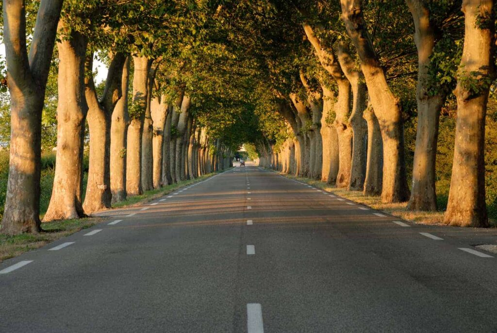 Driving in Provence, France