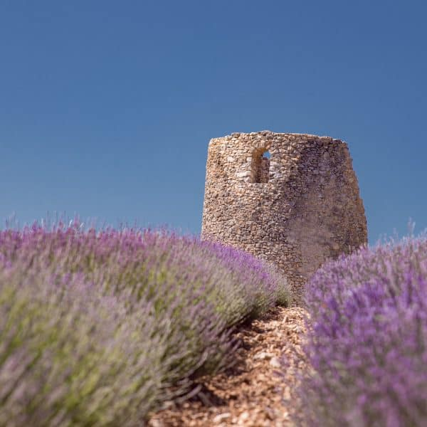 The Provence Palette - Finding Lavender and Ochre Mines in Rustrel