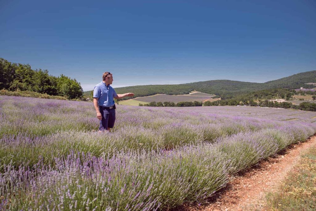 Jack Lincele of Chateau du Bois explains the intricacies of fine Provencal Lavender.