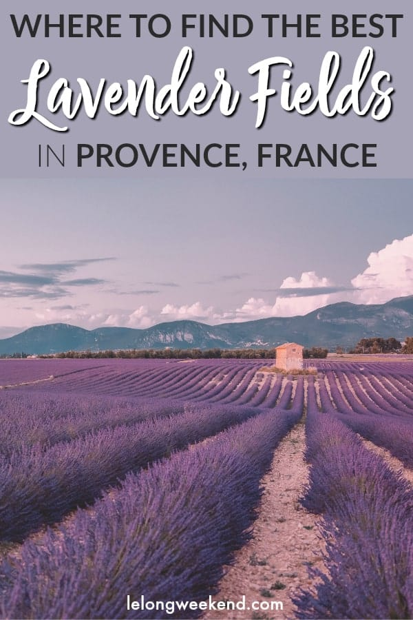 If you're heading to Provence to experience the incredible lavender fields, read this first! This detailed guide gives you the low down on where to go to see the best lavender fields in Provence, France