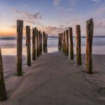 St Clair Beach in Dunedin is one of the best beaches in New Zealand south island.