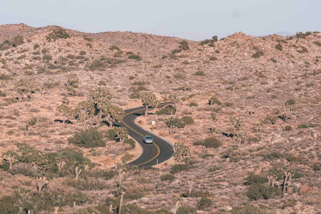Getting to Joshua Tree National Park by Car