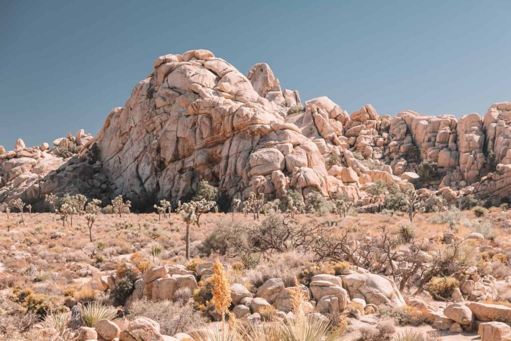 Hidden Valley Trail in Joshua Tree National Park