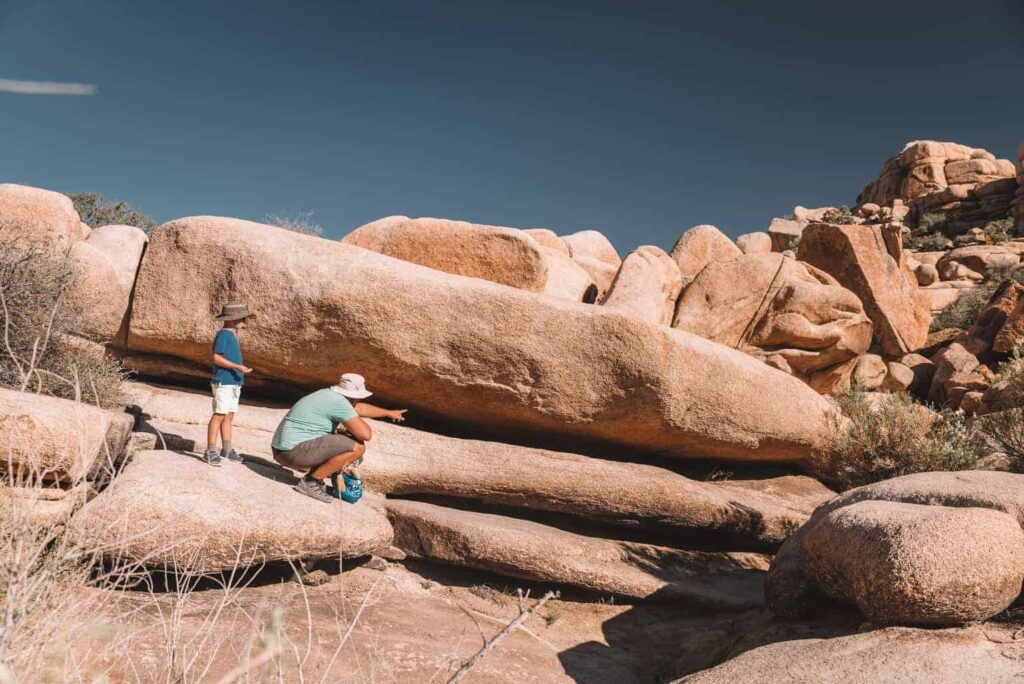 Visiting Joshua Tree with Kids