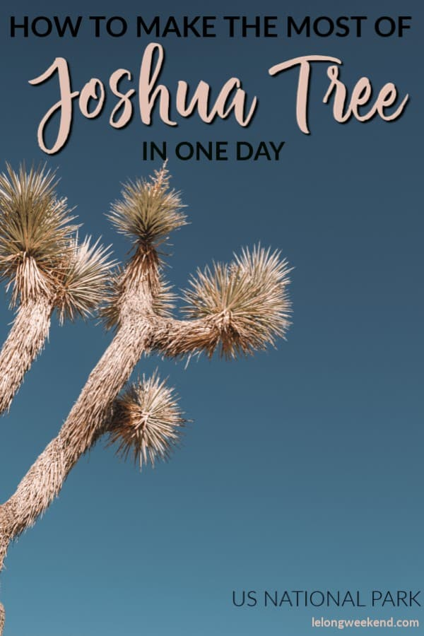 Discover the best of Joshua Tree National Park in just one day. Read about the best hikes in Joshua Tree, worthwhile stops on your itinerary, and what you'll need to explore this popular US National Park with kids! #Familytravel #USnationalparks #Joshuatree #california
