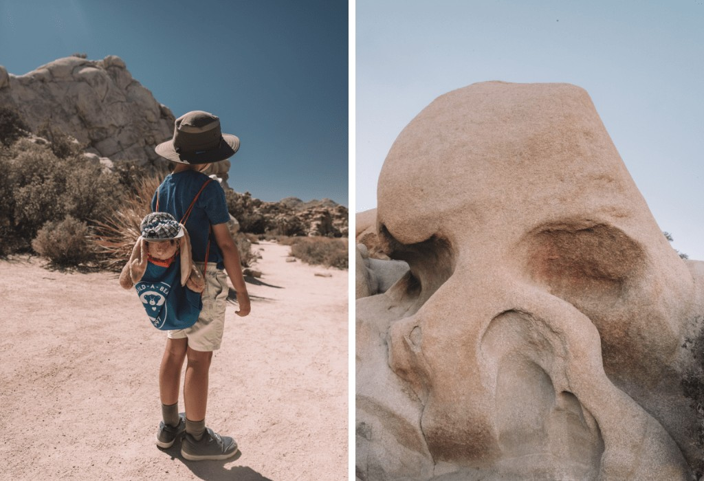 Skull Rock Walk, Joshua Tree National Park