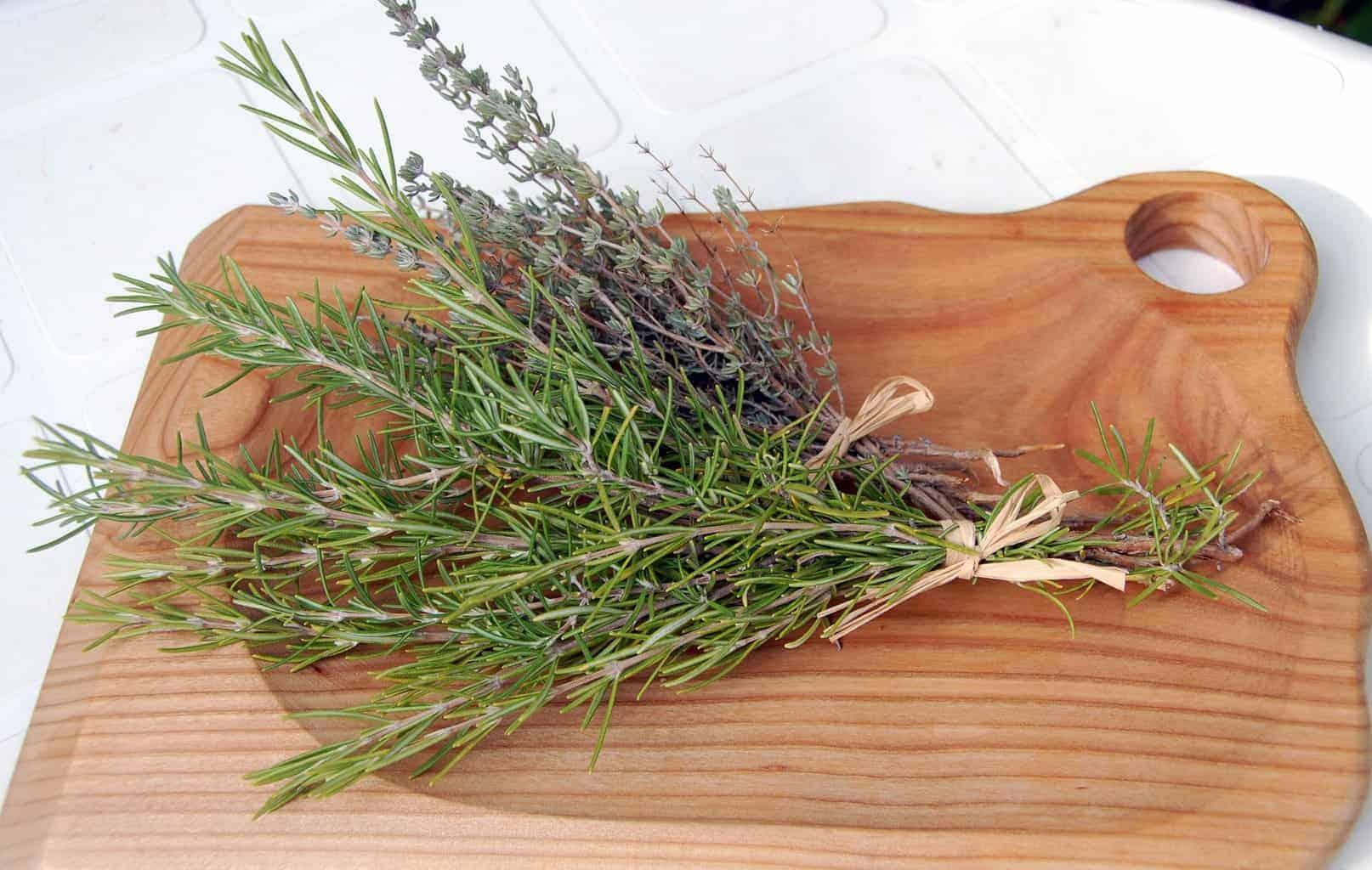 Herbs de Provence where to buy