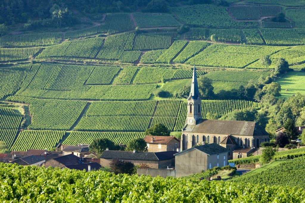 The Burgundy wine region should be on your bucket list for France!