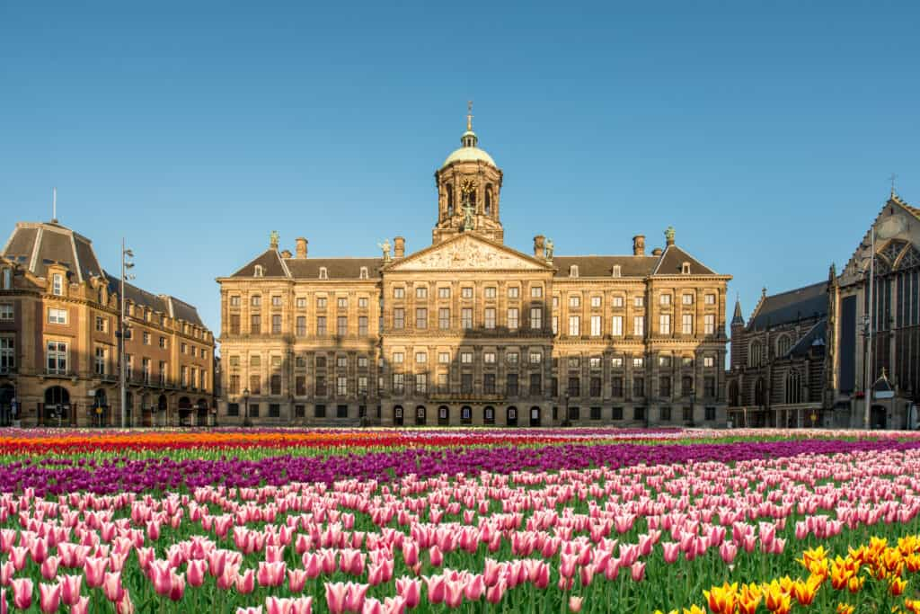 The National Tulip Day is celebrated in Amsterdam in January, making it one of the best times to visit this European city.