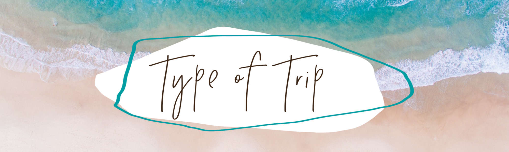 Type of trip
