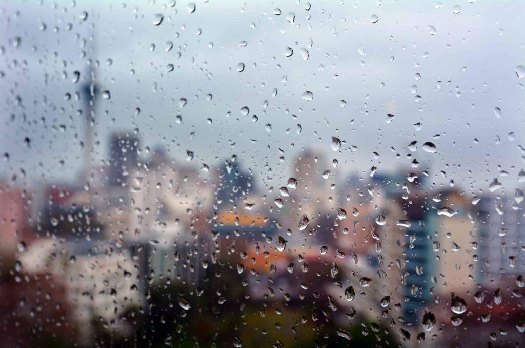 Best Indoor Activities in Auckland, New Zealand for Rainy Day Fun!