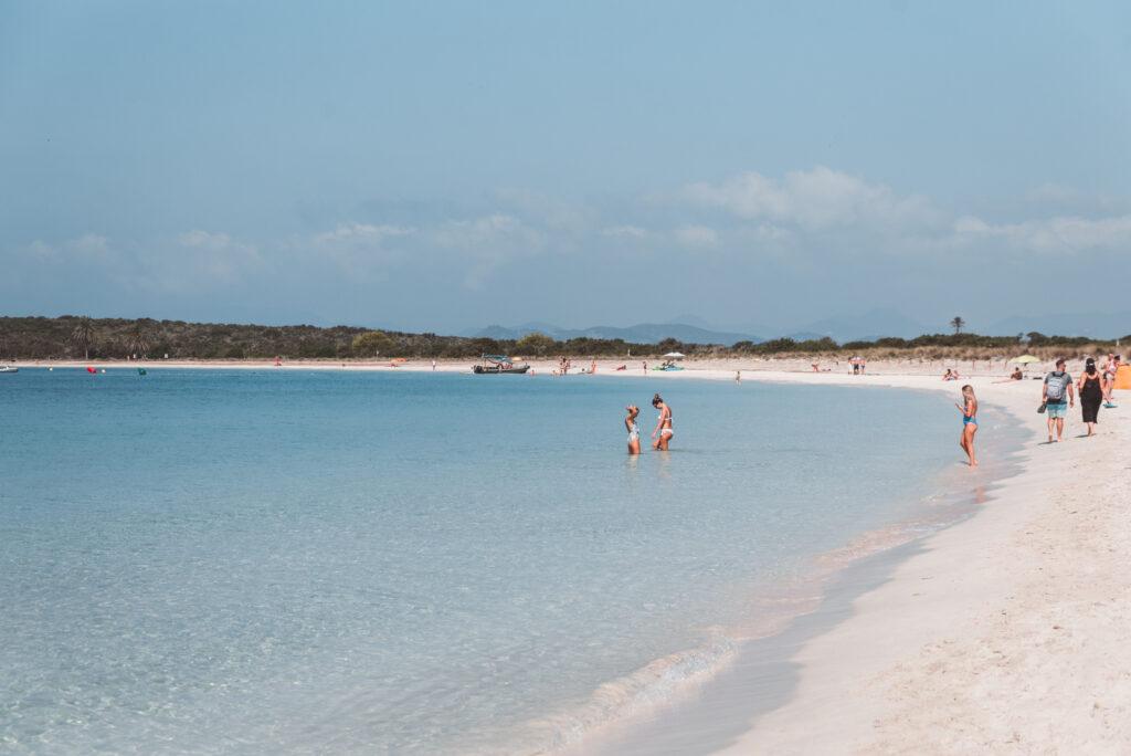 Espalmador Island Beaches