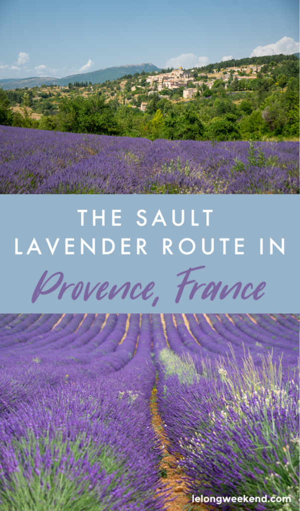 The most comprehensive guide to the Sault lavender fields in Provence, France. Read our ultimate one-day lavender itinerary, here!