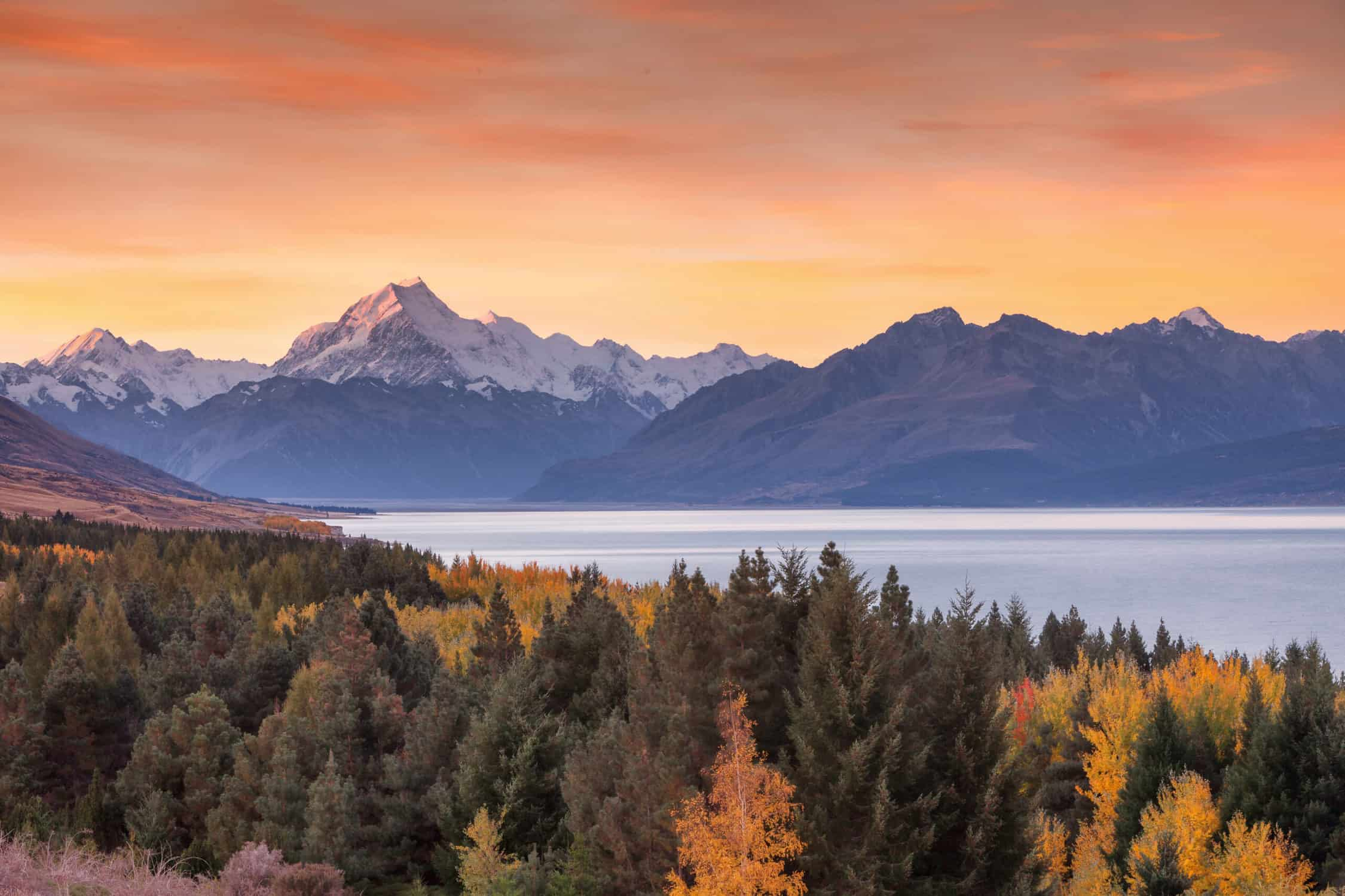 The Best National Parks in New Zealand