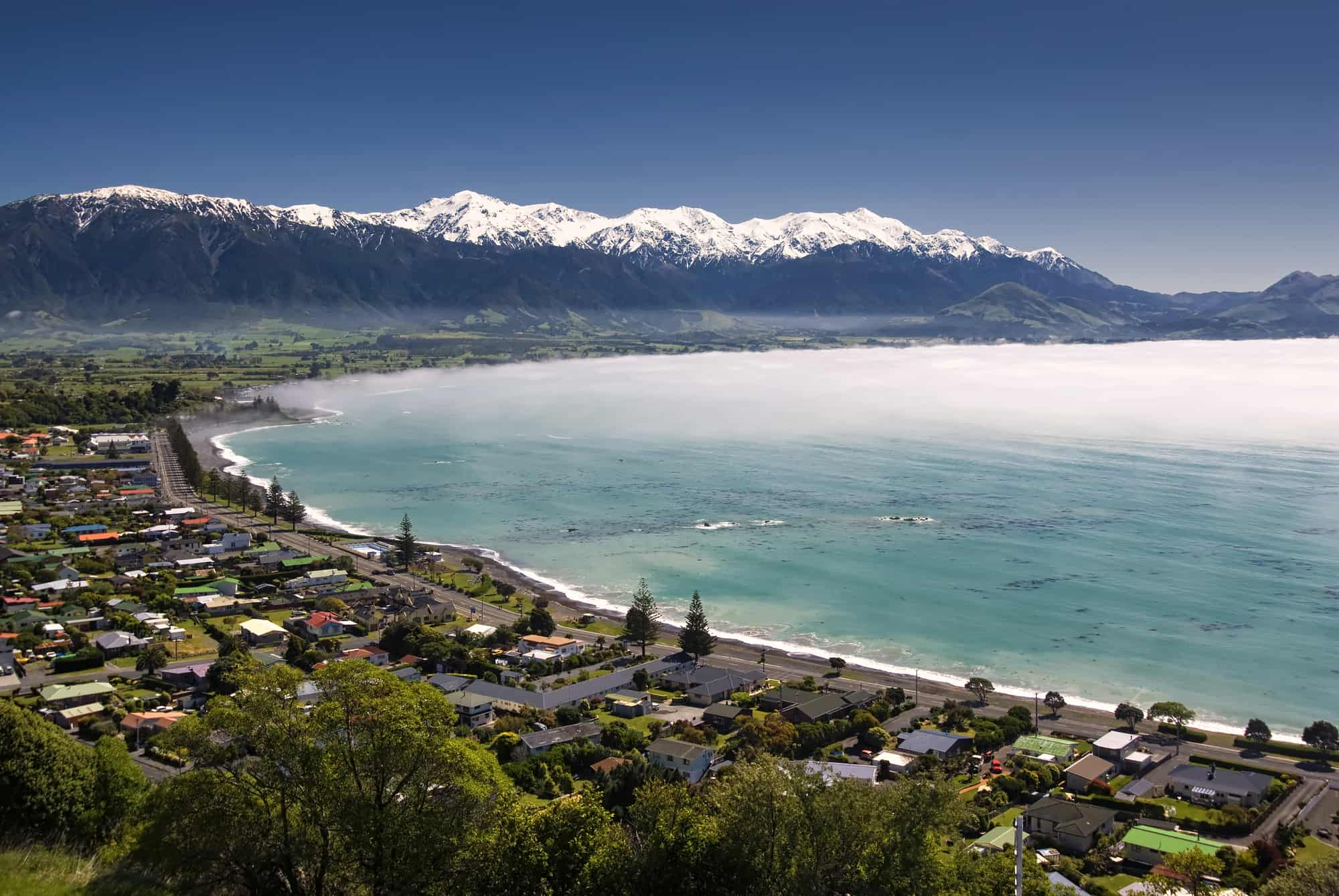 Free things to do in Kaikoura, New Zealand