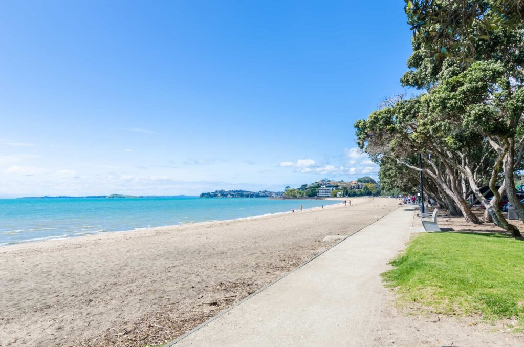 Best Beaches in Auckland New Zealand